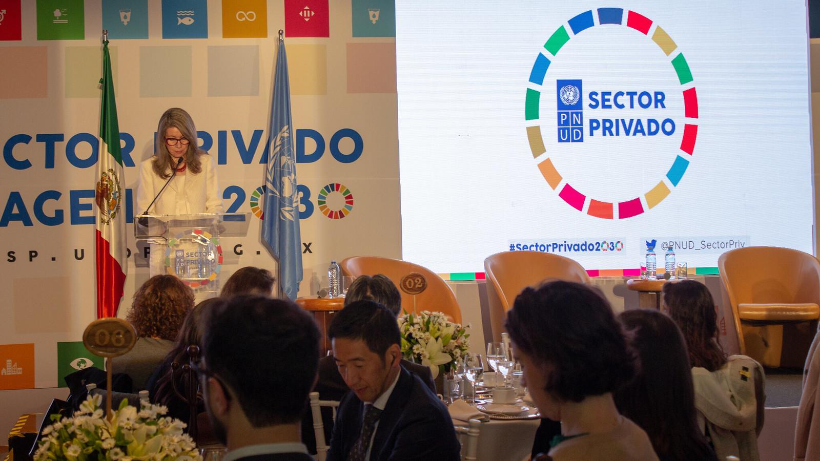 Plataforma del PNUD apoyará al sector privado para logro de Agenda 2030