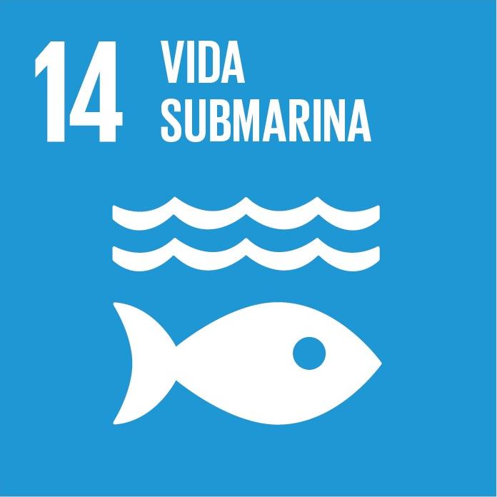 Conservar y utilizar en forma sostenible los océanos, los mares y los recursos marinos para el desarrollo sostenible.