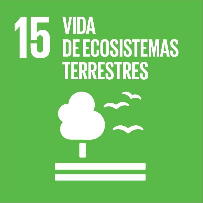 Promover el uso sostenible de los ecosistemas terrestres, luchar contra la desertificación, detener e invertir la degradación de las tierras y frenar la pérdida de la diversidad biológica.